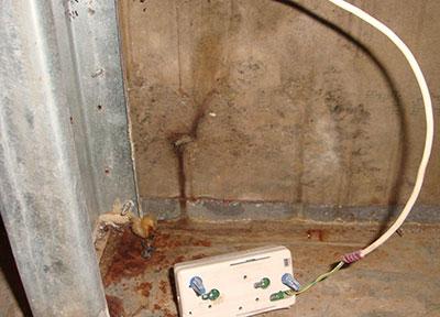 visible mold growth on sheetrock walls